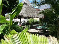 Backyard & Palapa
