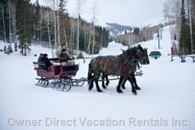 A Romantic Sleigh Ride