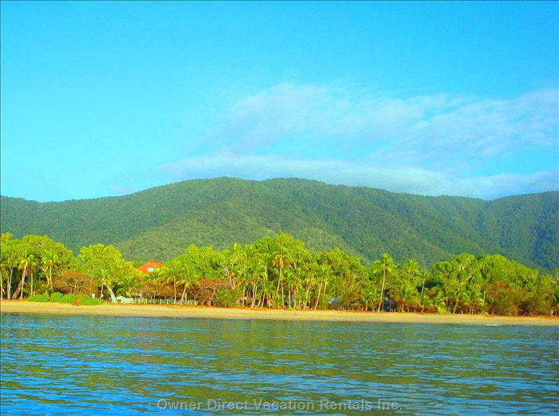 On the Beach Where the Mountain Rainforest Meets the Sea and the Great Barrier Reef