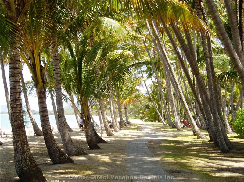 From 'villa Beach' Walk along the Beach to Palm Cove Restaurants and Cafes