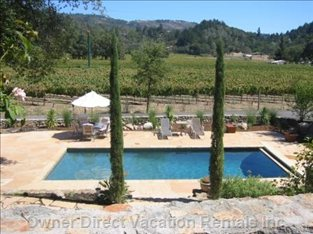 Pool with Vineyard Views from Front Door Entry