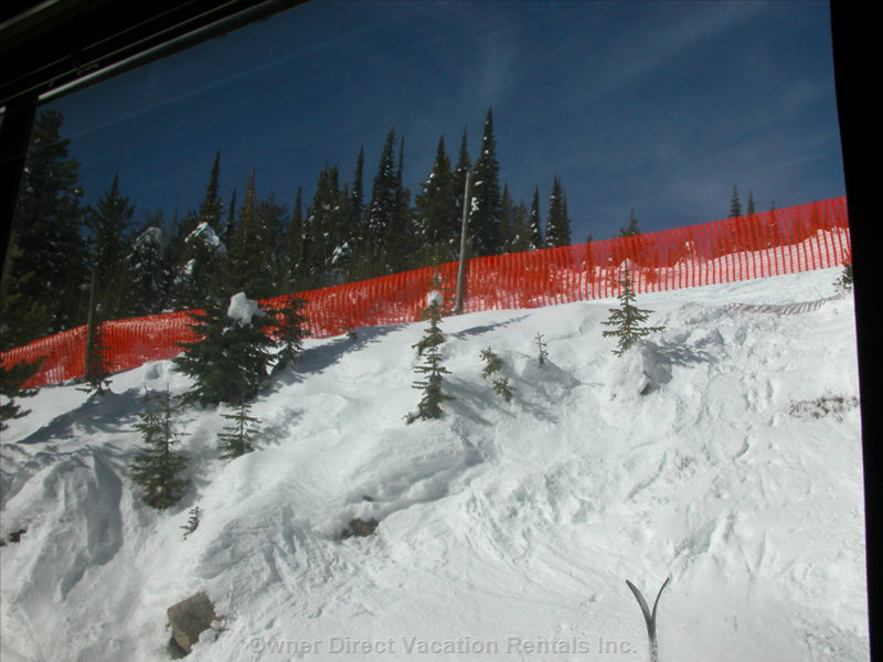 View from Bedroom Window; to Moguls Track above