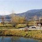 Bird Sanctuary Nearby - Stroll along the Waterfront to the Bird Sanctuary Just a few Minutes Away