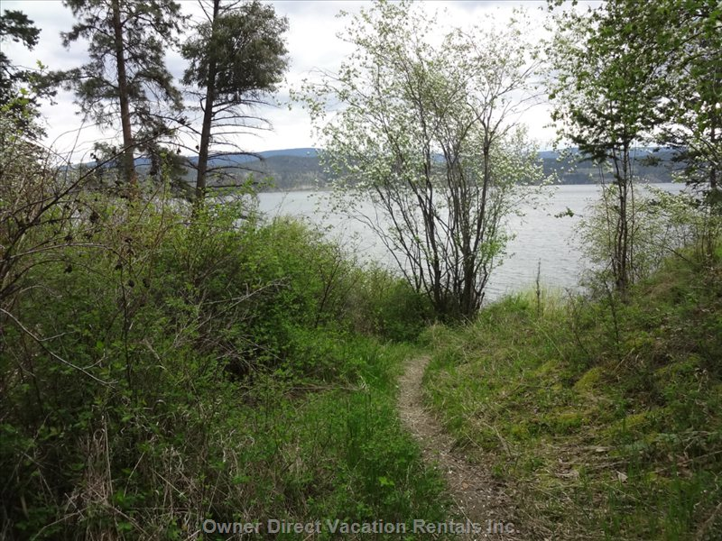 More Hiking Trails that Go down to and along the Lake
