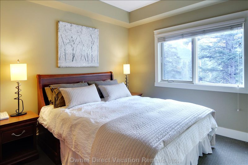Second Bedroom with Queen Bed and Forest Views