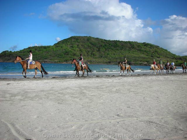 Horse-Riding along the Beach