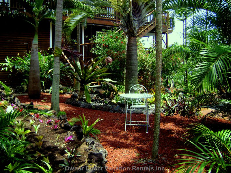Beautiful Magic Courtyard Garden Where you Can Rest, Relax and Meditate