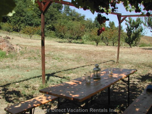 Outdoor Reserved Table + Bbq