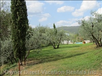 Part of the Garden Area - the Cottages Are Surrounded by Gardens, Olive Groves and Natural Tuscan Countryside.