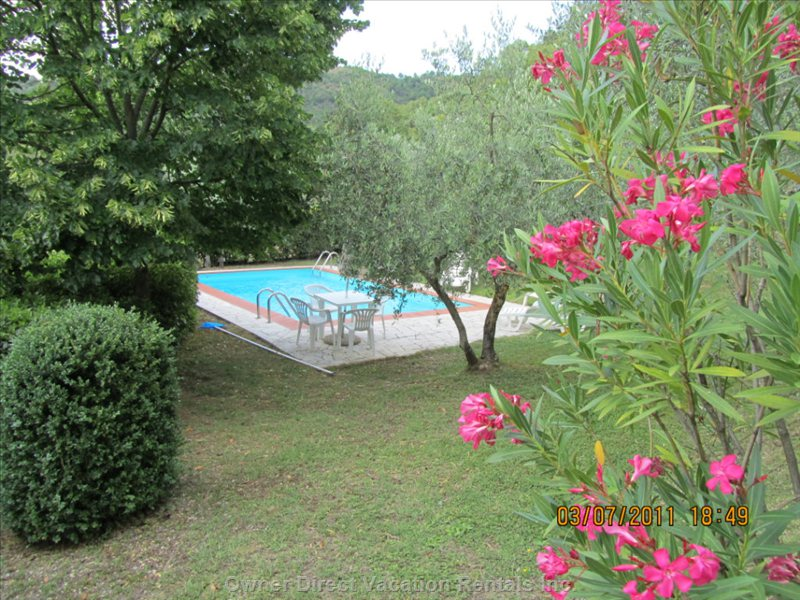 Part of the Garden and View of Pool - the Garden is a Combination of Natural Beauty, Olive Groves, Terracotta Filled Tubs and Lawns.