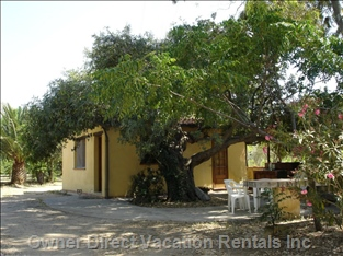 The Cottage under the Carob Tree, Shaded by Green Foliage, Seconds from Blue Seas.