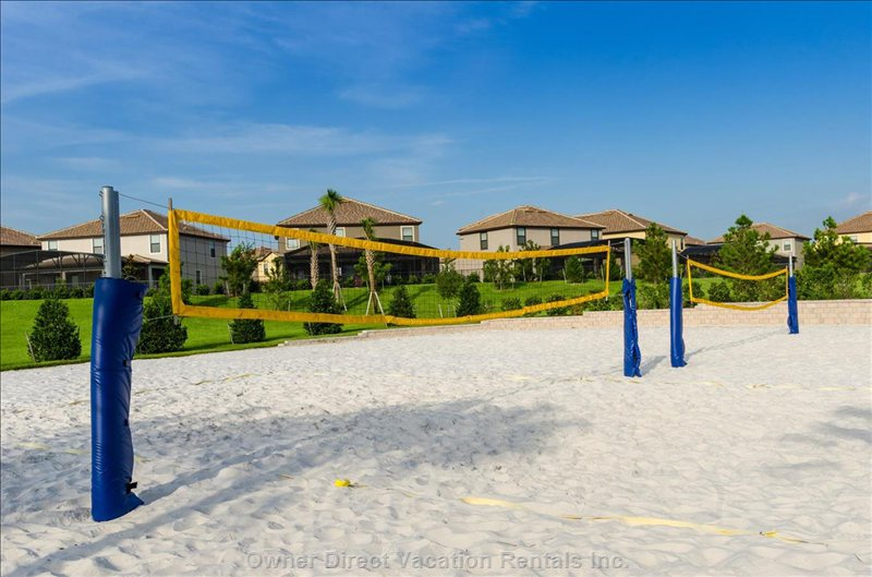 Challenge the Family to a Beach Volleyball Tournament!