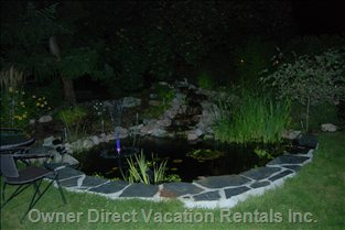 Fishpond at Night