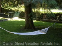 Hammock - Enjoy the Frontyard Hammock and the Sound of the Birds and the River