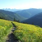 Mount Cheam Trail. Lots of Hiking to Do in the Chilliwack River Valley!