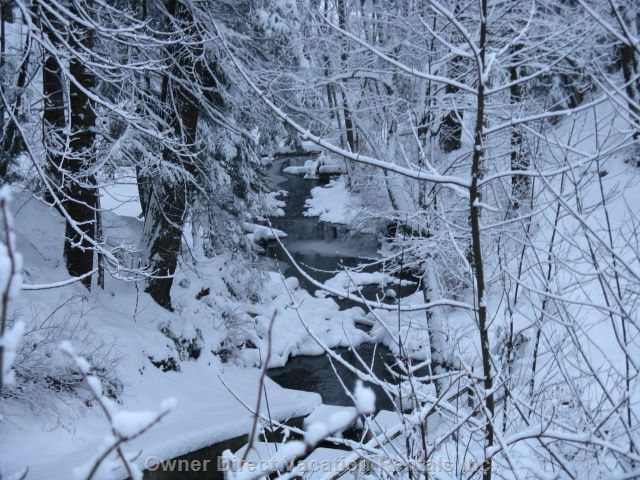 Nearby Hiking Trail on a Rare Snow Filled Day - Snowfalls Are few in the Comox Valley but we Do See them Sometimes Once Or Twice a Year.