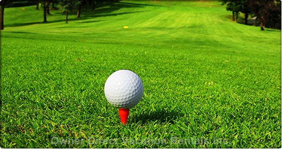 Golf Fore Everyone. Two Local Courses with Driving Range and Also a Putting Course.