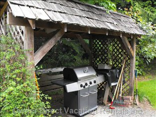 Bbq is under Cover for Year round Grilling.