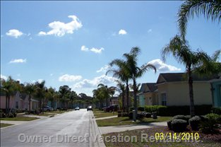 Palm Tree Heaven - the Peaceful Street the Villa is Located on