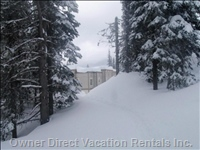 Ski Way and Dog Walking Trail Right Outside your Door.  Pet-Friendly Condo.