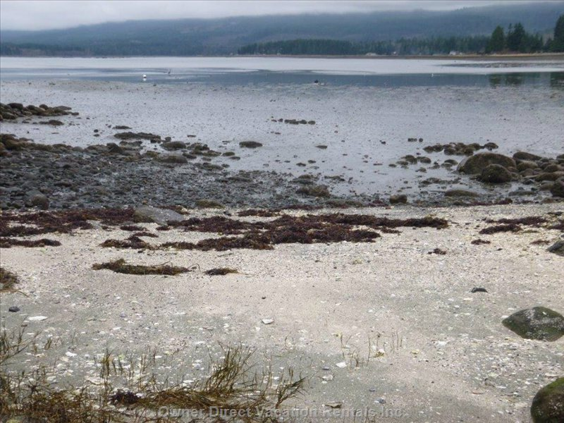 Walk-on Waterfront at Low Tide (Tide out)