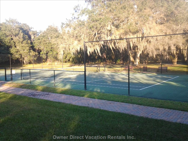 Gorgeous Tennis Court Nestled among 100 Year Old Oak Trees