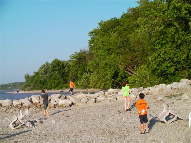My Kids and their Friends Finding Sticks for that Night's Smores Making on the Beach