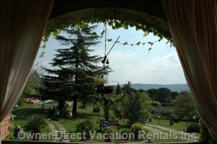 View from the Patio of the Garden of 2000sqm with Two Secular Oaks and Trees of Fruit and Olive in the Plot of 9000sqm