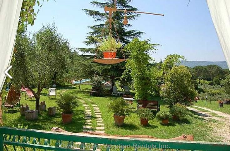 View from the Patio of the Garden of 2000sqm, with Two Secular Oaks and Trees of Fruit and Olive in the Plot of 9000sqm