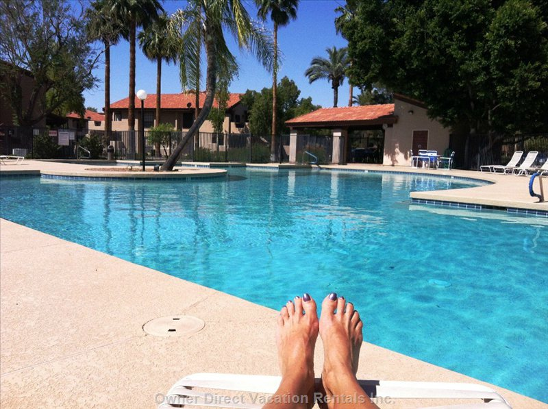Pool - Picture yourself Here! Lots of Lounges Available by the Pool and Selection of Pool Side Table and Chairs.