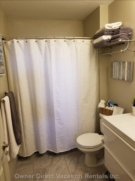 Newly Renovated Bath with New Fixtures, Vanity, Tile, Paint