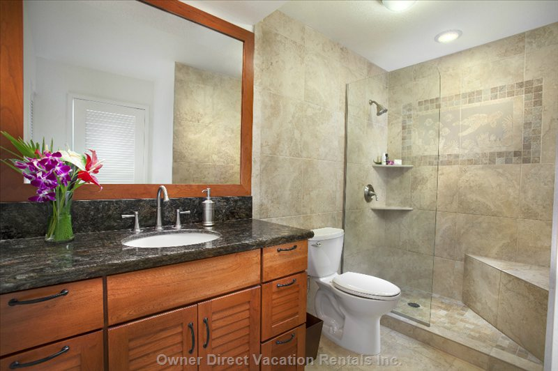 En-Suite with Elegant Vanity, Walk-in Shower, and Seated Platform