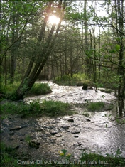 The Property has several Streams