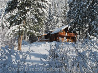 Cabin in the Heart of Winter