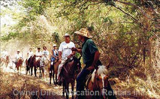 Horseback Riding in the Jungle Or on the Beach.