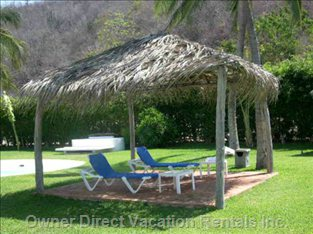 Want Shade?    Lounge Chairs Waiting for you!