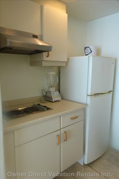 Full Size Refrigerator and Two Burner Stove Top in Kitchen
