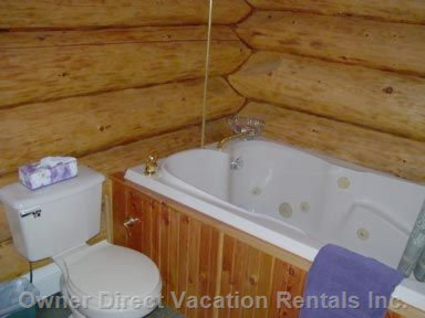 Jacuzzi Tub and Sunflower Shower