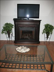 "42"" TV with Cozy Electric Fireplace, DVD Player. Free:  TV Channels, Video Games, Movie Channel, Weather, News, Radio Etc."