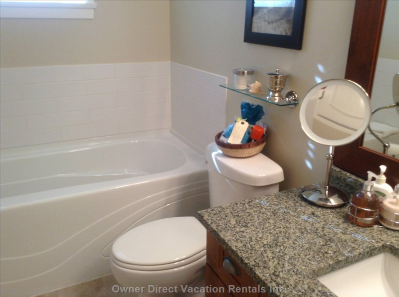Master Bathroom Soaker Tub