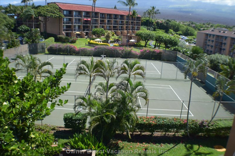 Tennis Courts (Total of Six Courts in the Complex.