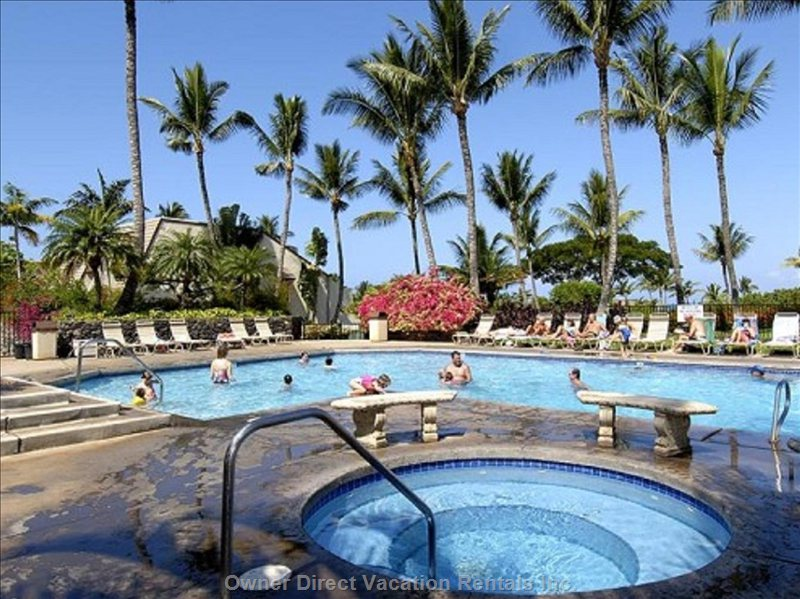 Heated Pool with Jacuzzi and Bbqs under Patio.  Next to Maui Kamaole Main Office Where you Check in for your Stay.