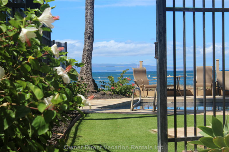 Walk from the Lanai into the Pool Area