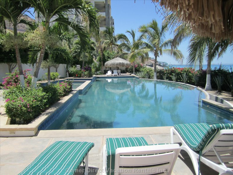 Large Pool with a Palapa Shade at each Side and Plenty of Lounge Chairs.