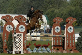 See Hits Thermal Desert Circuit Horse Show Great Event: Meet Top World Riders
