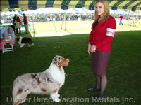2015 Dog Show 1st Place Winner in her Category