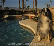 This is a Vacation Home for the Whole Family, so Bring Fido Too !