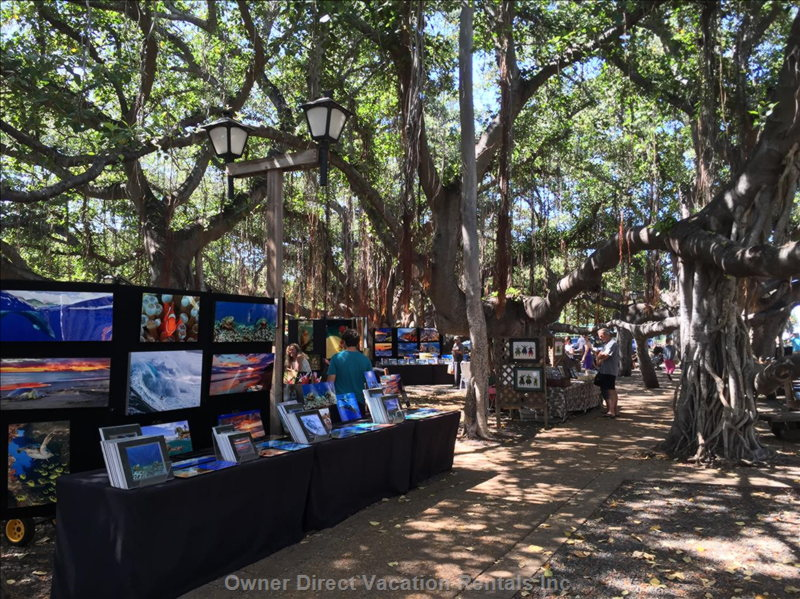 Art Show under the Banyan Tree in Lahaina Every Saturday.
