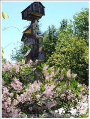 Birdhouses and Lilacs