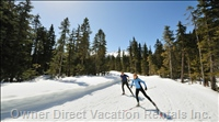 Just Minutes from the Larch Hills X-Country Ski Hill which Offers Four Seasons of Activities.